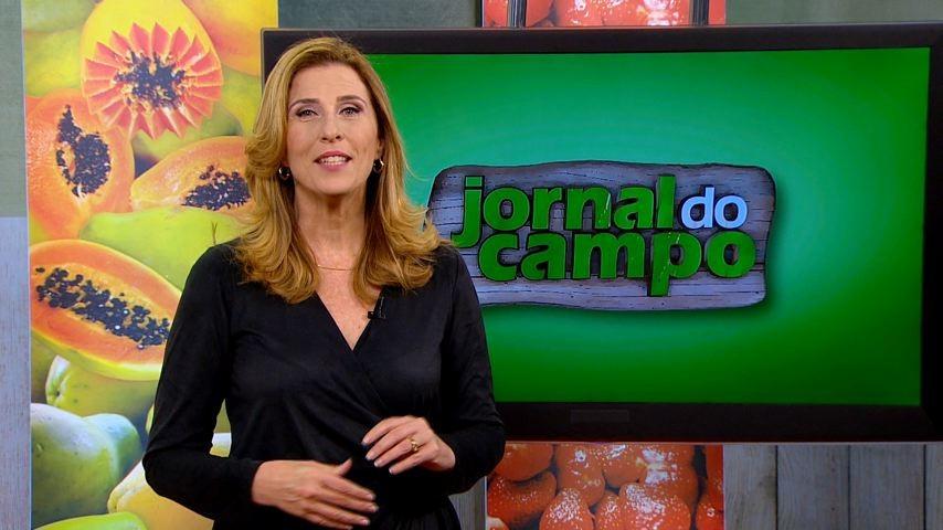 Claudia Gregório comanda o Jornal do Campo (Foto: Divulgação)