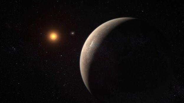 O planeta orbita a estrela mais próxima do Sol, Proxima Centauri  (Foto: ESO)