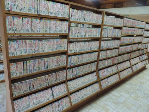Prateleira é lotada de mangás: no local são 51 mil livros do gênero (Foto: Caio Gomes Silveira/ G1)