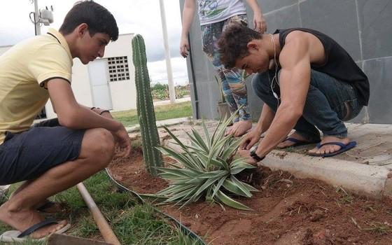 Alunos plantam jardim com espécies nativas da caatinga na escola Lucas Emmanuel Lima Pinheiro, no município de Iguatu (Foto: divulgação - Alana)
