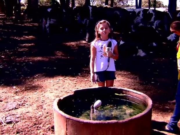 Jordanna visitou fazendas de Bela Vista de Goiás para alertar moradores (Foto: Reprodução/TV Anhanguera)