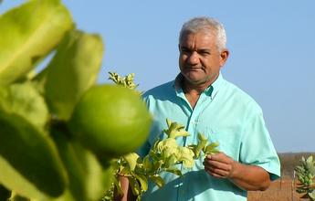 Carrasco do Vasco em 2005, Cícero Ramalho vira produtor de frutas no RN
