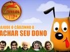 Brinque aqui com o game exclusivo da atração do Domingão (Domingão do Faustão / TV Globo)