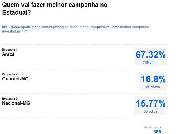Resultado enquete: Quem vai fazer a melhor campanha no Estadual - Mineiro 2013 (Foto: Reprodução)