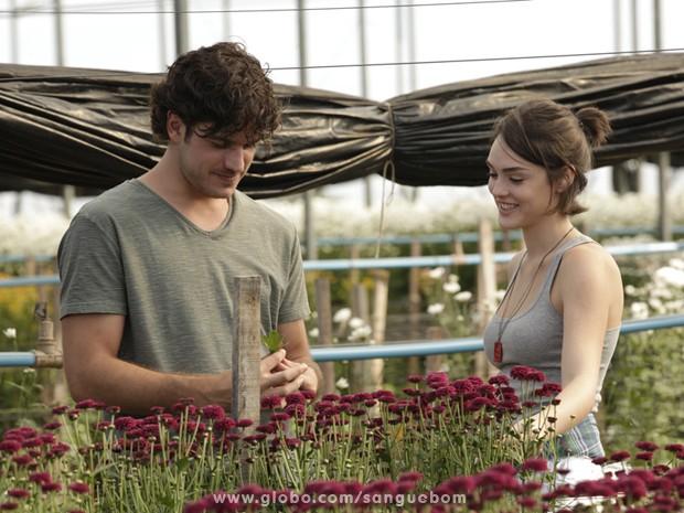 Bento e Giane visitam os campos de Holambra (Foto: Sangue Bom/TV Globo)