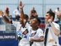 Vasco, Botafogo, Grêmio, Fluminense e 4 clubes lutam pelo título brasileiro