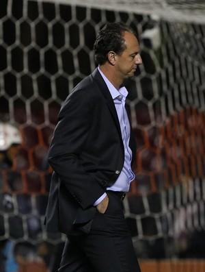 São Paulo x Fluminense Rogério Ceni (Foto: Rubens Chiri/saopaulofc.net)