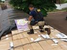 Motorista é preso transportando 350 mil maços de cigarros em carreta