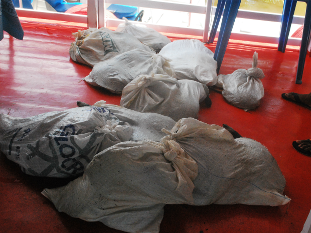 Pescados e quelônios sendo capturados e  transportados ilegalmente (Foto: Ipaam/Divulgação)