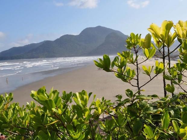 Praia na região da Juréia, em Peruíbe, SP (Foto: Divulgação/Prefeitura Peruíbe)