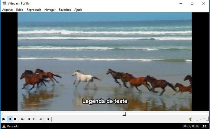 Media Player Classic é uma opção completa para rodar FLV no Windows (Foto: Reprodução/Barbara Mannara)