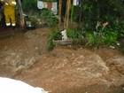 Defesa Civil emite alerta para pancadas de chuva em Santa Catarina
