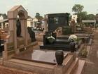 Morte de gatos em suposto ritual de magia negra é investigada em Ribeirão
