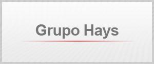 Grupo Hays (Foto: G1)