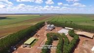 Relembre o tour técnico em uma fazenda de Regeneração