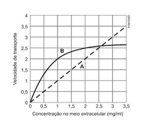 Questão de biologia da Unicamp (Foto: Unicamp)