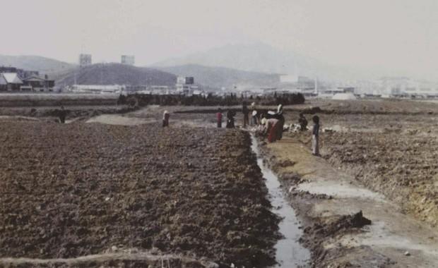 O distrito de Gangnam, em Seul, nos anos 80 (Foto: AP/Yonhap/Lee Sung-kyu)