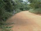 Ibama autoriza início das obras de pavimentação da MG 760