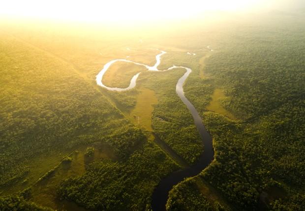 """O Amazonia Live, que conta com a mobilização do público sob o slogan """"Mais que Árvores, Vamos Plantar Esperança"""", é um movimento global, lançado no ano passado, com foco na restauração florestal da Amazônia (Foto: Rock in Rio / Flickr)"""
