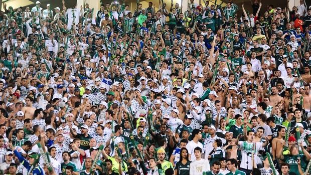Torcida Palmeiras x Tigre (Foto: Marcos Ribolli)