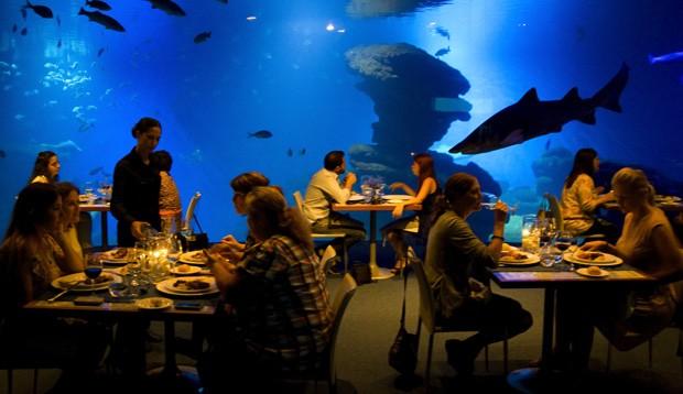 Restaurante funciona dentro de tanque de tubarões mais profundo da Europa (Foto: Jaime Reina/AFP)