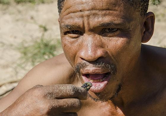 Depois de assado na areia quente, o inseto é consumido por Qhaikhgao  (Foto: © Haroldo Castro/ÉPOCA)