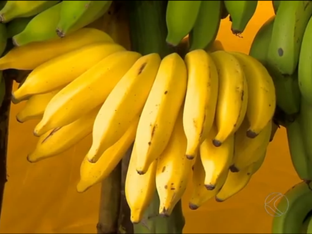 Banana em Piau, MG (Foto: Reprodução/TV Integração)