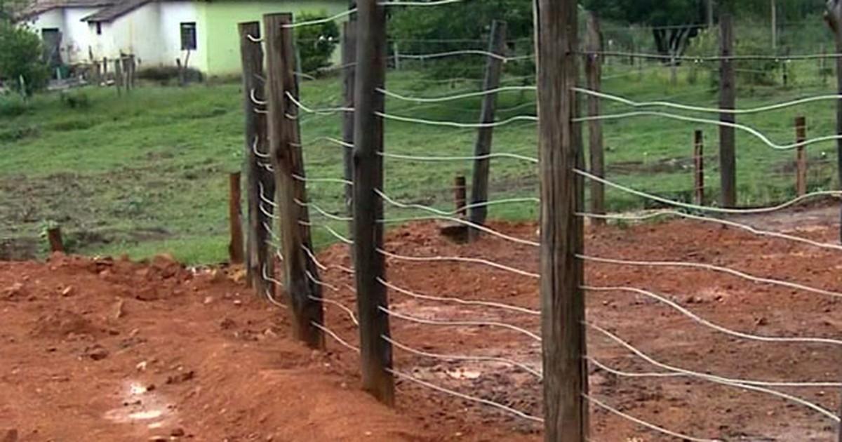 Jovem morre ao ser pisoteado por boi em Monte Sião, MG - Globo.com