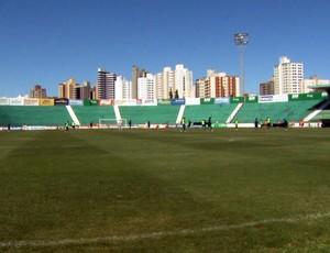 Brinco de Ouro, estádio do Guarani (Foto: Carlos Velardi / EPTV)