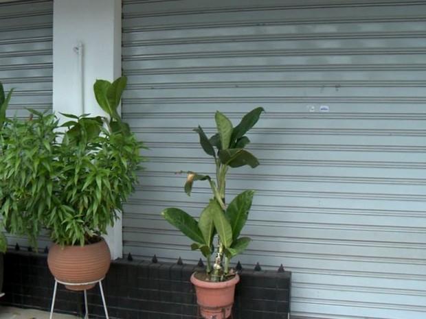 Comércio no bairro Ilha de Santa Maria permanece fechado (Foto: Reprodução/ TV Gazeta)