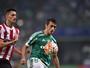 Robinho renova contrato com o Palmeiras até o fim de 2019