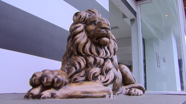 Loja Comercial Garra do Leão