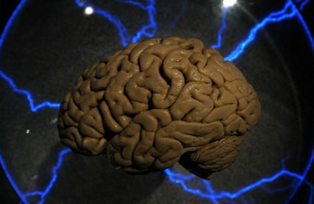 Ser bilíngue aumenta a inteligência, diz estudo