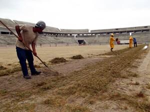 Plantio da grama da Arena das Dunas começou nesta quarta (14) (Foto: Jocaff Souza/G1)