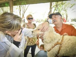 Orientação veterinária (Foto: Divulgação)