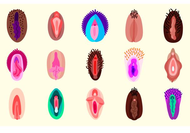 Emojis com diferentes formatos de vaginas (Foto: Reprodução)