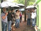 Cemitérios rurais no PR viram ponto de encontro entre amigos e familiares