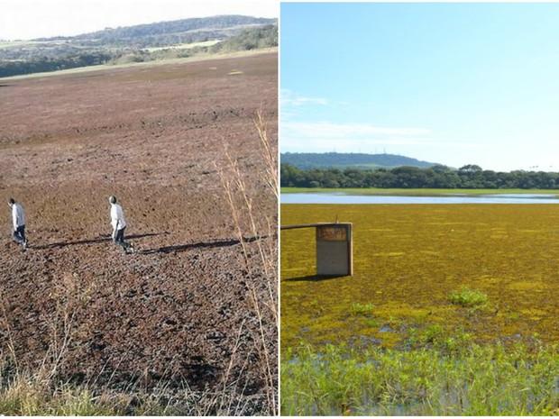 Represa em Iracemápolis antes e depois da estiagem (Foto: Fernando Inversu e Gustavo Reis/ Arquivo pessoalo)