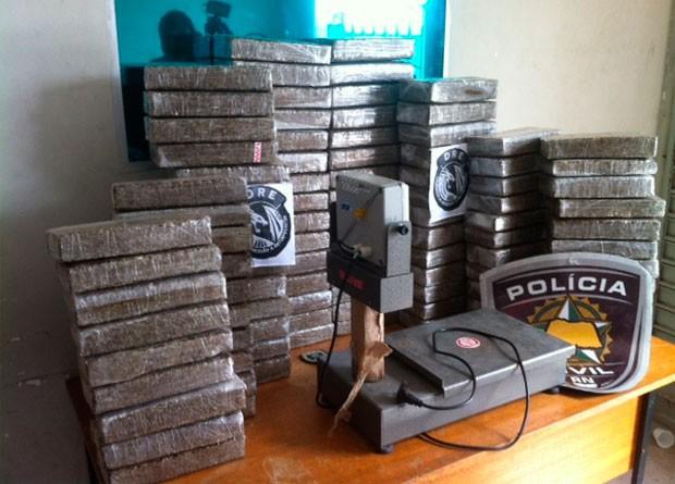 Mais de 130 quilos foram encontrados em um galpão na cidade de Parnamirim (Foto: Igor Jácome/G1)