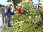Chuva provoca estragos em cidades da região de Sorocaba