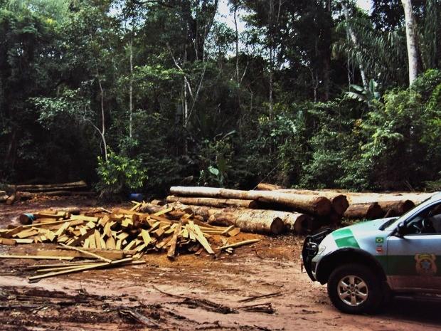 Além de aplicar multas, fiscais também apreenderam madeira extraída ilegalmente e equipamentos. (Foto: Ibama-MT/Ascom)
