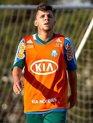 Chico treino Palmeiras (Foto: Leandro Martins / Agência Estado)