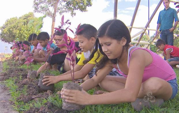Crianças do projeto plantando uma muda na beira rio (Foto: Reprodução/TV Amapá)