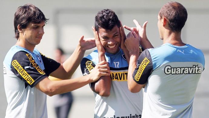 wallyson botafogo (Foto: Vitor Silva/SS Press)