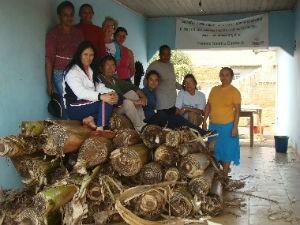 Artesãs do grupo Milagre da Fibra, de Itaquiraí (Foto: Divulgação/Milagre da Fibra)