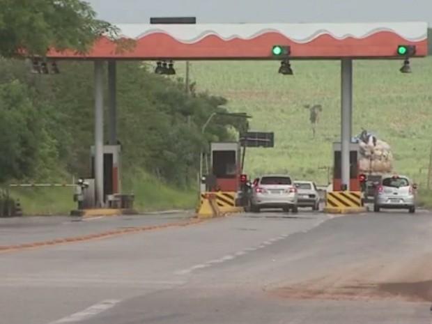 Pedágio na rodovia Limeira-Cordeirópolis (Foto: Reprodução/EPTV)