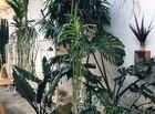 Flo Atelier Botanico