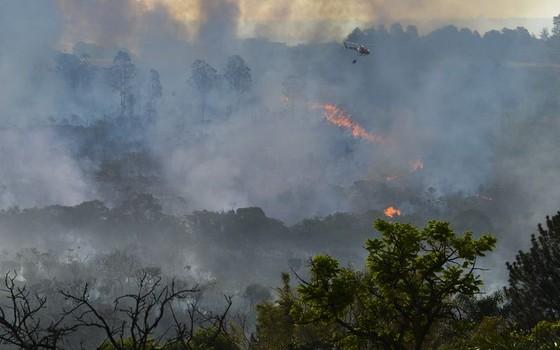 Incêndio atinge área de floresta do Cerrado em Brasília (Foto: Valter Campanato/Agência Brasil)