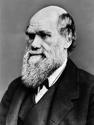 Retrato de Charles Darwin: autor morreu rico, com fortuna de mais de US$ 20 milhões. (Foto: AFP)