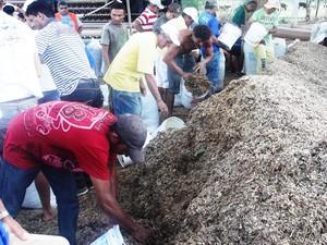 Governo da Paraíba distribuiu ração animal durante toda semana nas cidades de Patos, Sousa, Cajazeiras e Taperoá (Foto: Divulgação/Secom-PB)